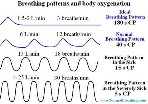 breathing pattern in heart failure types of respiratory patterns with charts