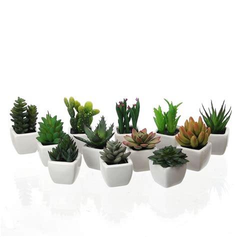 piante finte da interno piante grasse finte piante finte come scegliere le