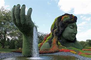 How To Shape Topiary - plants as you ve never seen them garden housecalls