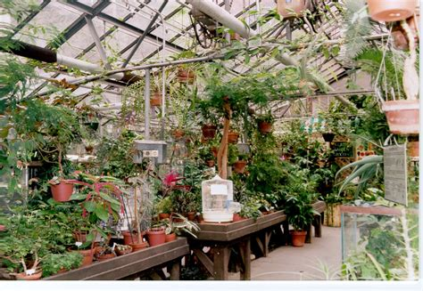 the following pictures of the glasshouse and the enid haupt garden were taken on april 22 at