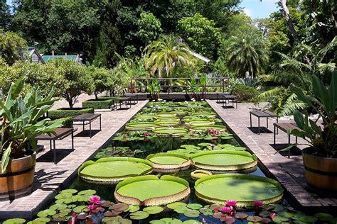 Stellenbosch Botanical Gardens Stellenbosch Botanical Garden And Leisure