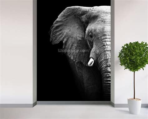 elephant wall murals elephant up wallpaper wall mural wallsauce
