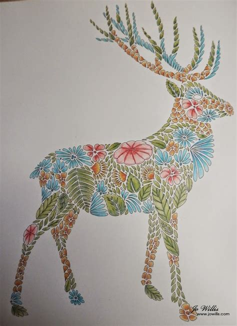 deer animal kingdom colouring book pinterest