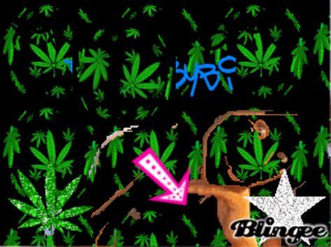 imagenes chidas animadas marihuana fotograf 237 a 102644631 blingee com