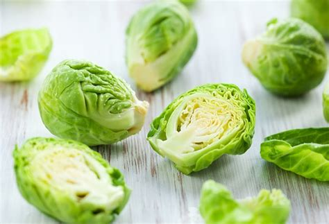 can dogs brussel sprouts can dogs eat brussels sprouts