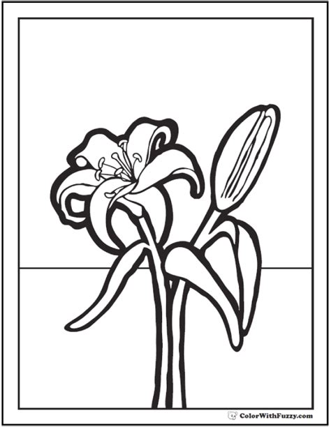lily coloring pages customize   printables