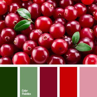 cranberry color color palette 2738 color palette ideas design color