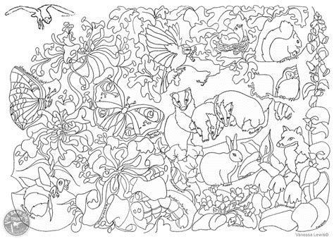British Wildlife Colouring Page The Barn Owl Trust Wildlife Coloring Pages