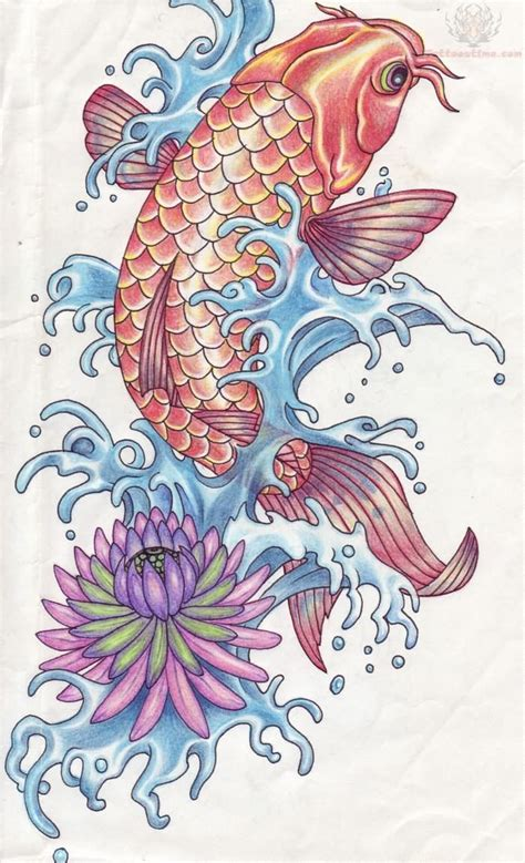Collection Of 25 Japanese Koi Lotus Flower Water Waves Breathtaking Photos Of Koi Fish Designs