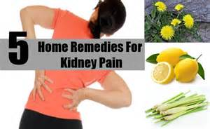kidney home remedy kidney location back kidney get free image