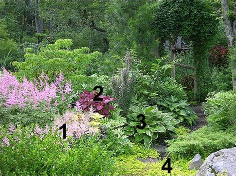 10 plants that don t need sunlight to grow sunlight garden and plants plants that don t need much sun 28 outdoor plants that don