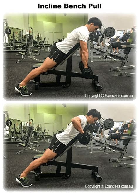 incline bench pull incline bench pull 25 best ideas about best trap exercises