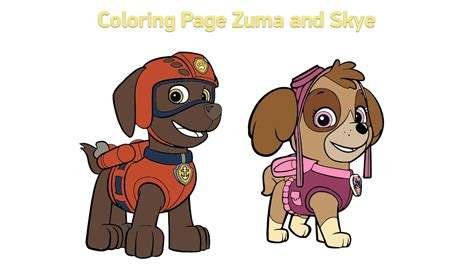 how to your to do paw paw patrol and zuma www pixshark images galleries with a bite