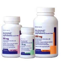 rilexine for dogs rilexine cephalexin heartlandvetsupply