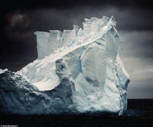 libro the blue ice pinguini iceberg e elefanti marini in un viaggio mozzafiato attraverso l antartico a meno 90