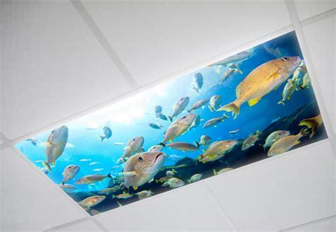 decorative fluorescent light diffuser panels cheap decorative fluorescent light covers image of