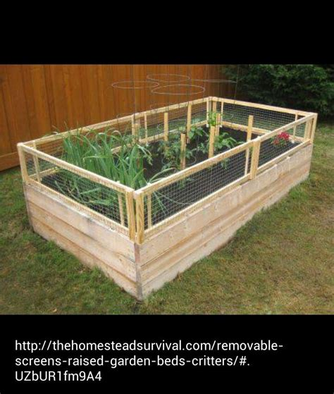 Raised Garden Bed With Fence by Raised Garden Bed With Critter Fence Garden Things