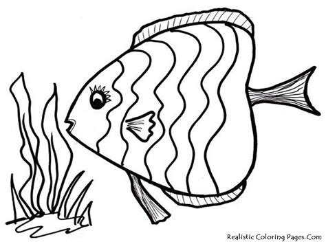 free coloring pages of fish outline template