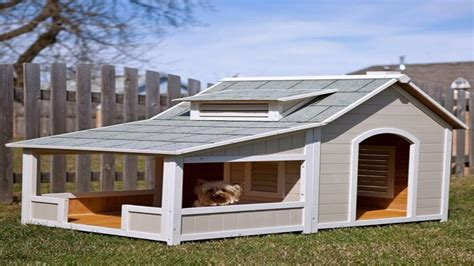 dog houses com dog houses with free plans you need it full ᴴᴰ youtube