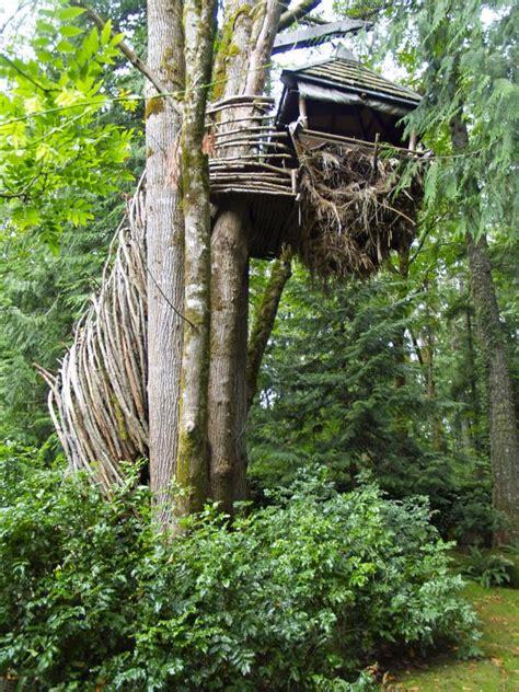 treehouse designers guide romero studios hgtv