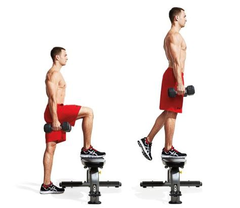 bench step ups with dumbbells 7 dumbbell step ups the best workout ever according to