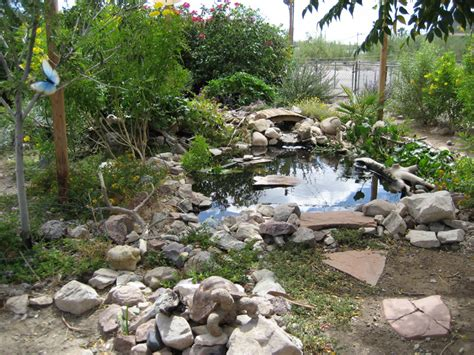 backyard fish pond how to landscape with backyard ponds gazebos gazebo