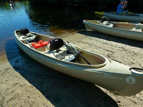 most comfortable kayak where s eldo collier seminole state park guided canoe trip