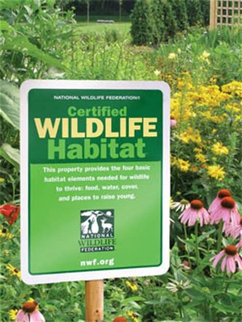 backyard habitat certification how to get your backyard certified as a wildlife habitat