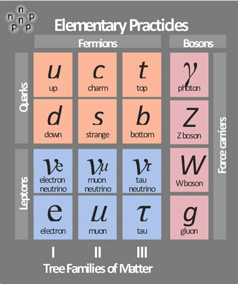 standard model flowchart standard model flowchart pictures to pin on