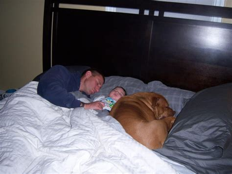 safe bed sharing 17 best images about unsafe sleep environments for babies