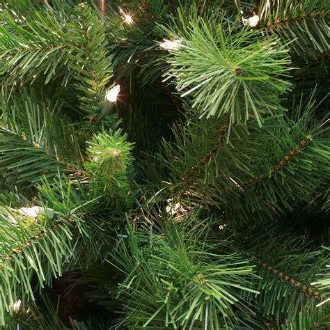 dunhill fir wintergreen corporation