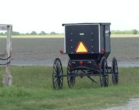 the beekeeper s the amish of bee county books the amish of bee county