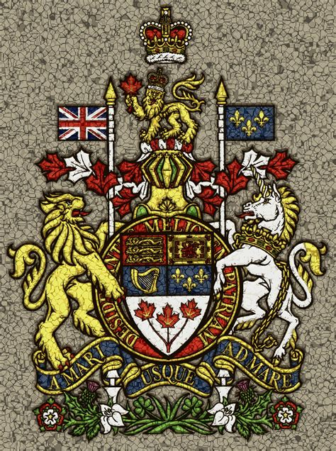Canadian Home Design Blogs aged and cracked canada coat of arms photograph by david g