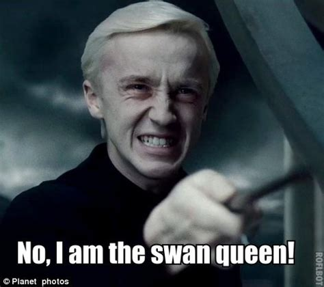 Draco Malfoy Memes - hipster draco yes draco yes you are