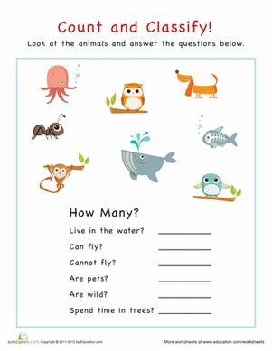 do light therapy ls work animals and offspring lesson plan education com