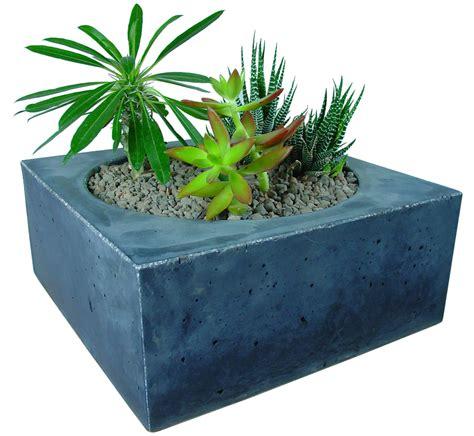Cactus Planter | planters concrete planters