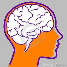 google images brain 1000 images about brain photos on pinterest icons