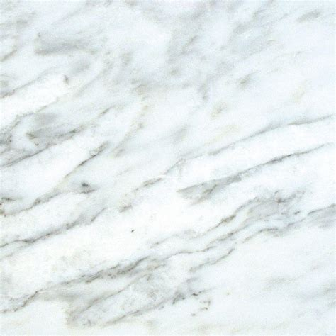 ms international greecian white 18 in x 18 in honed