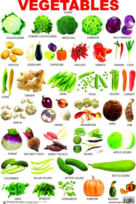 a vegetables list vegetable list a z with pictures