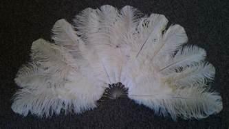 large feather fans burlesque fans feather fans ostrich fans big feather