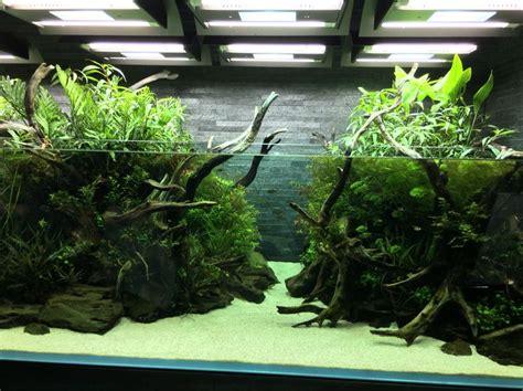 aquarium design amano indonesia nature aquarium takashi amano すみだ水族館 sumida aquarium