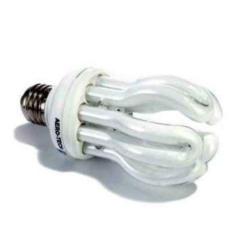 Spectrum Bird Light Bulbs Free Engine Image