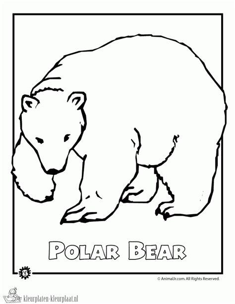 coloring pages extinct animals kleurplaten ijsbeer kleurplaten kleurplaat nl