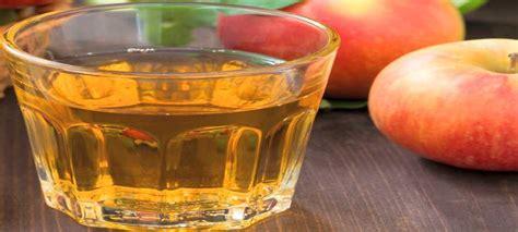 sidro di mele fatto in casa come si fa l aceto di mele in casa
