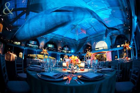 history themed events under the sea prom decorations hall of ocean life