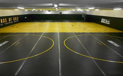 Ez Flex Sports Mats by Mats By Ez Flex Quality Lightweight Competition Mats