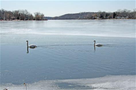 public boat r kent island lake directory home kent murray lake kent county