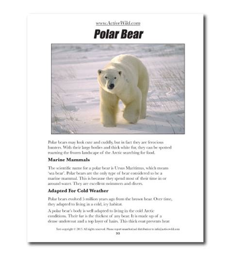 printable animal fact sheets free awesome animals book for all active wild readers