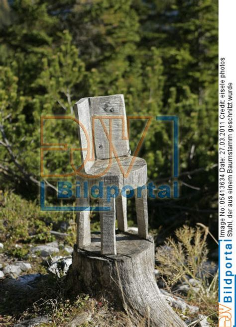stuhl aus baumstamm details zu 0005413634 stuhl der aus einem baumstamm