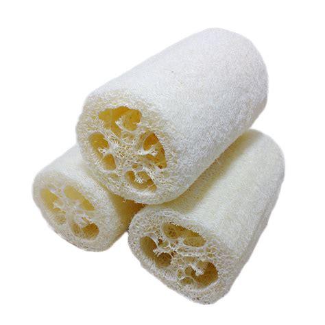Dotty Sponge Spons Foam Brush 4 Pieces Buy Wholesale Loofah From China Loofah Wholesalers